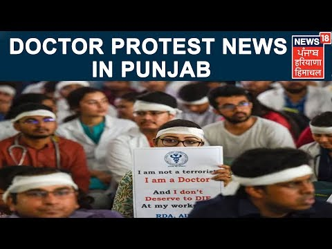 Doctor Protest News In Punjab   Punjab Latest News Update  News18