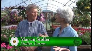 Garden Time show 15  6-11-16