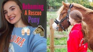 Meet My New Rescue Pony /vlogtober 13+14/