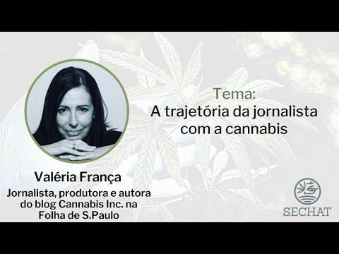 A trajetória da jornalista com a cannabis