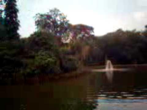 vacation in bogor botanical garden