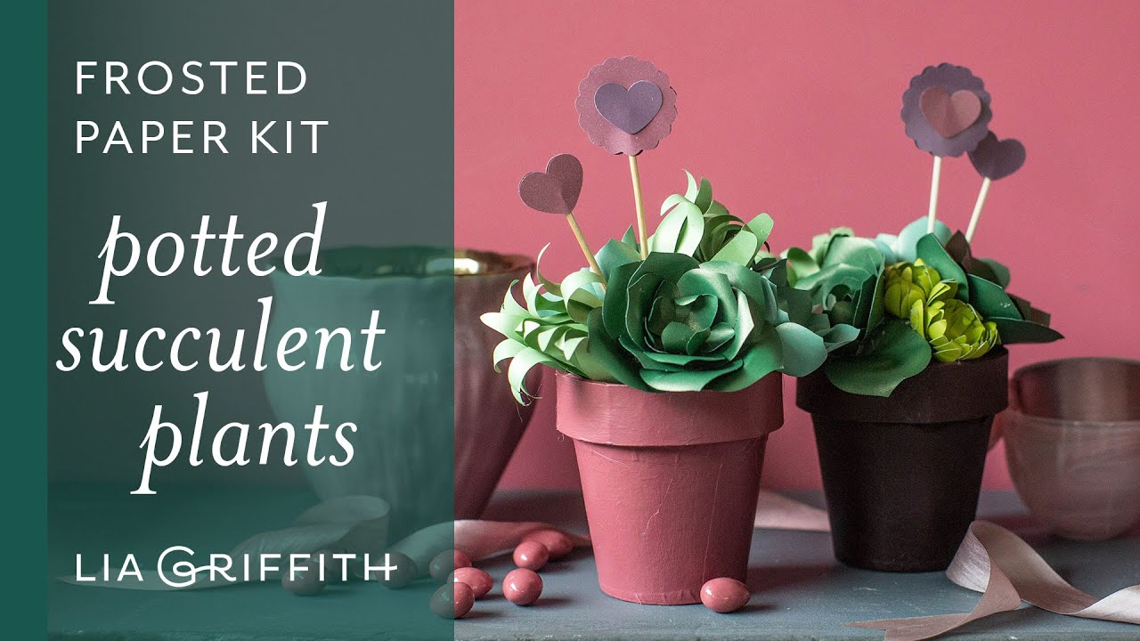 Video: Potted Paper Succulent Valentine