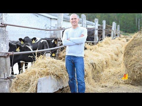 A Silagem na Pecuária Leiteira - Curso Produção e Utilização de Silagem