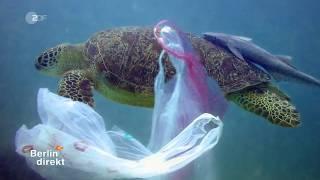 Plastikmüll im Meer - Die Recycling-Lüge - Ca.6 Millionen Tonnen Plastikmüll pro Jahr in Deutschland