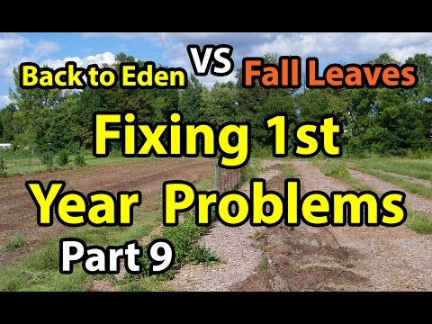 Back to Eden Organic Gardening 101 Method with Wood Chips VS F.L. Deep Mulch Gardening Series # 9