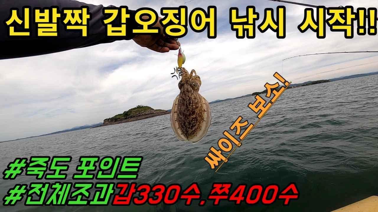 21년 갑오징어낚시 시즌시작 초릿대 끝보기#cuttlefish#fishing#갑오징어