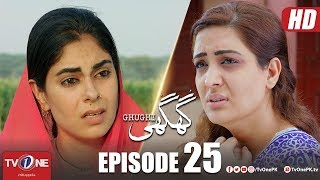 Ghughi | Episode 25 | TV One | Mega Drama Serial | 12 July 2018
