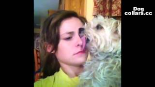 dog,girls,funny.Funny dog love doggy style with pretty girl