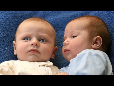 Funny Twin Babies Talking to Each Other Compilation (2017)