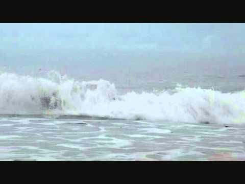 FRANK ZAPPA -- THE OCEAN IS THE ULTIMATE SOLUTION -- THE LEATHER VERSION