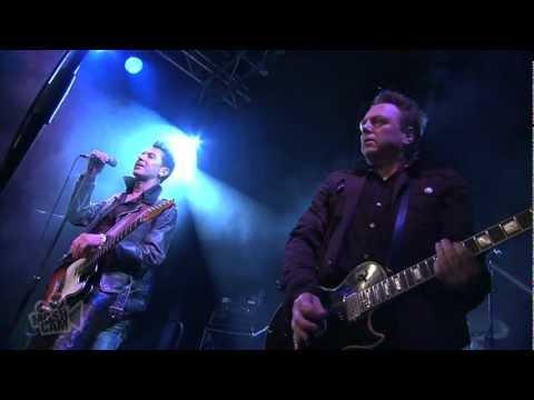 International Swingers - Friday On My Mind (The Easybeats) (Live in Sydney) | Moshcam