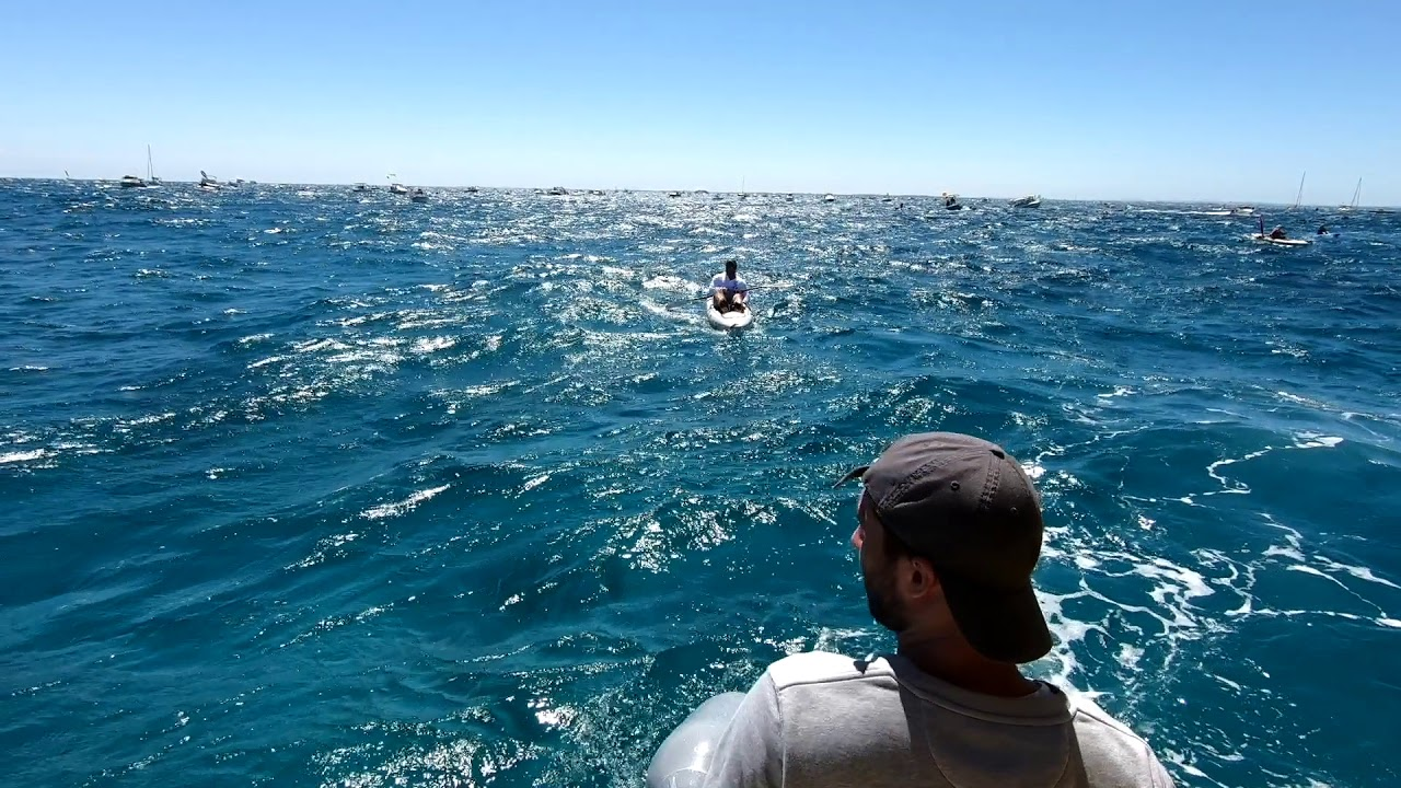 Rottnest Channel Swim 2018 By Phoebe Sachse Photography