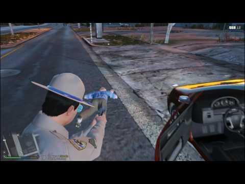 COPS In The LSPDFR Matrix Episode 39