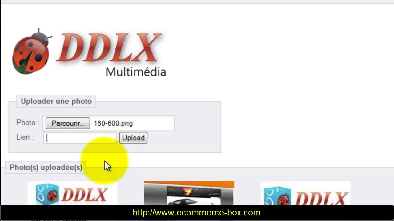 module ddlx