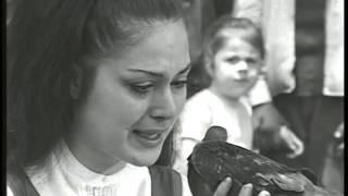 Veda Busesi - Türk Filmi