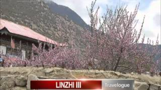 Travelogue In Linzhi 3: Visit To The Grand Canyon And Tibetan God Of Death