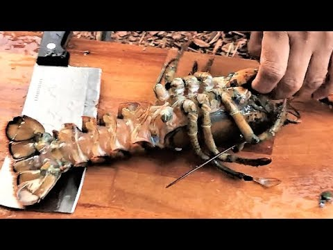Stir Fried Lobster | Ginger and Onion Lobster | How to Clean and Cut Lobster by Chef Shafin