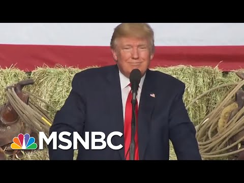 President Donald Trump Filled Swamp With Former Lobbyists | The Last Word | MSNBC