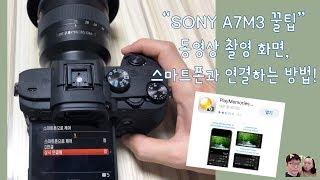 SONY A7M3 꿀팁 동영상 촬…