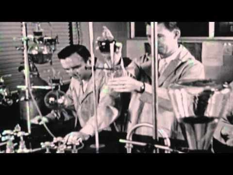 Rheingold   Dreiklangsdimensionen HD Extended Video Remix Boa) (HD)