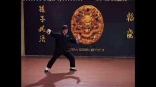 Тайцзи цюань. Стиль Ян. 24 формы