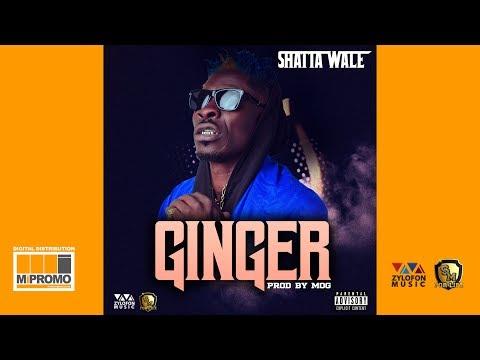 Shatta Wale - Ginger (Audio Slide)
