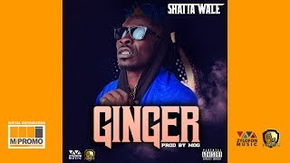 Shatta Wale - Ginger (Audio Slide)