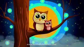 Baby Sleep Music Lullaby for Babies To Go To Sleep Baby Lullaby Songs Go To Sleep Lullaby Baby Song