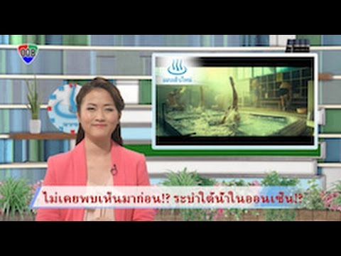 "Onsenken Oita Broadcast ข่าว""OOB""(ภาคภาษาไทย)"