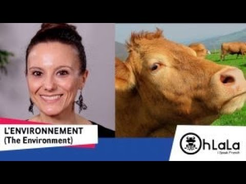 Protecting the environment: French vocabulary lesson - Make the planet great again