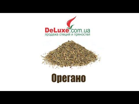 Орегано – полезные и лечебные свойства орегано. Чем ее