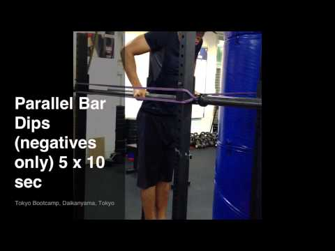 Parallel Bar Dips (negatives only)