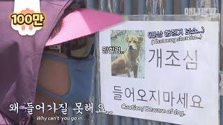 앞집 사는 그 개자슥 1화ㅣ Neighbor Dog Only Barks At One Lady.. For A Shocking Reason!!