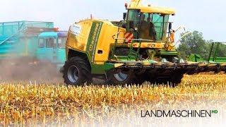 Krone BIG X 1100   Fendt Traktoren   MAN   Maishäckseln 2015