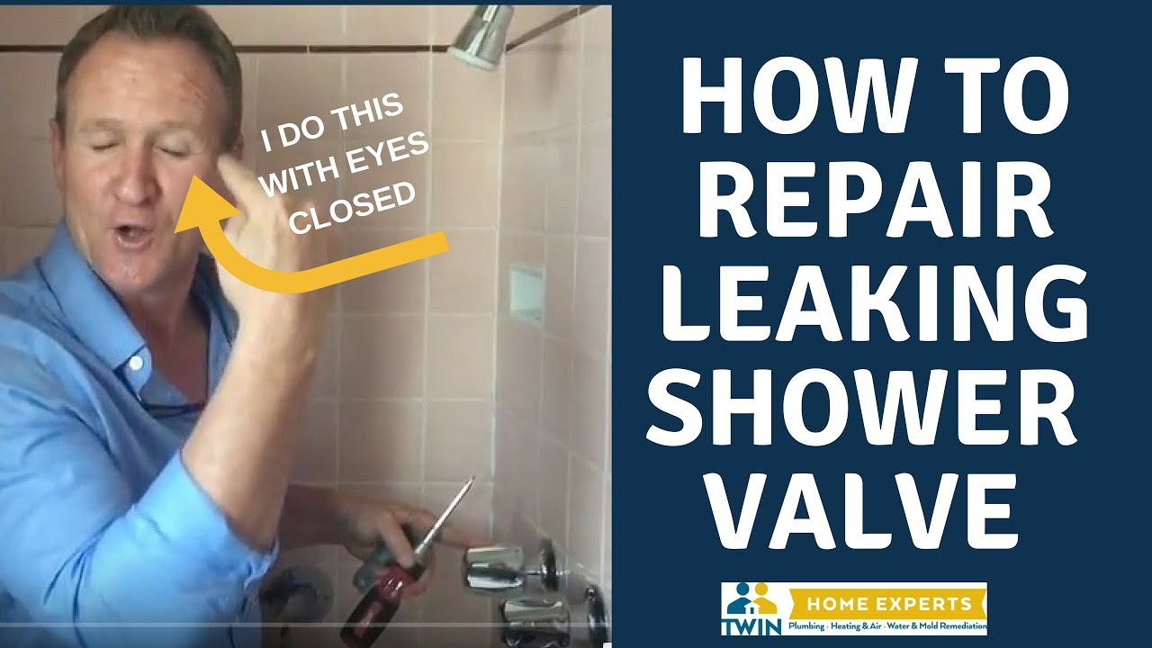 How to repair that leaking Price Pfister 2 handle shower valve W/MY ...