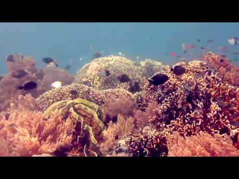 Visit Gorontalo (NOT) Hidden Paradise