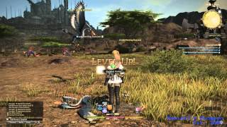 Final Fantasy XIV: A Realm Reborn (2013) (PC) (Square Enix)