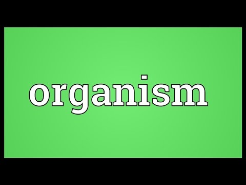 Organism Meaning