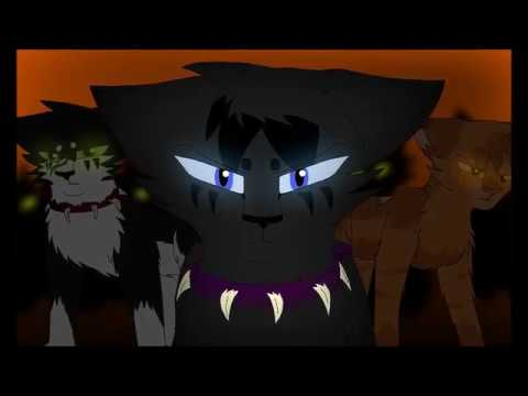 The Prophecies Begin PMV - Warriors (Imagine Dragons)