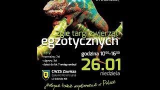 Videoblog Terrarium.pl odc. 2. Relacja z II Bydgoskich Targów Zwierząt Egzotycznych 26.01.2014
