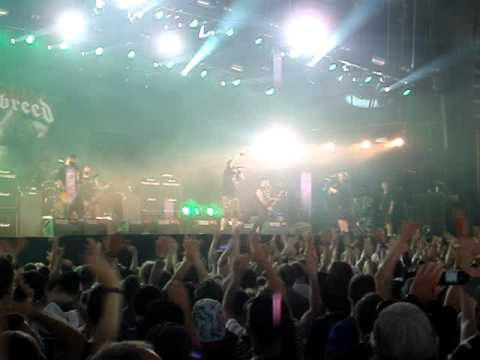 Hatebreed - Dead Man Breathing : Roskilde Festival 6 July 2013