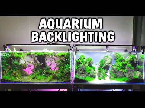 HOW TO MAKE: Cheap LED Aquarium Backlighting