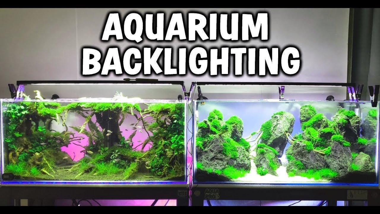 how to make cheap led aquarium backlighting youtube