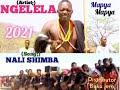 Gambar cover Ngelela samoja_Nali shimba_2021