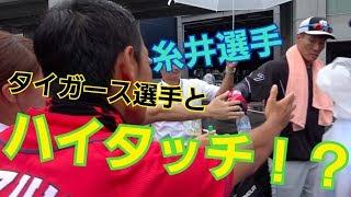 カープが誇る天才打者が遊人TV見てた!?タイガース選手とハイタッチ企画! thumbnail
