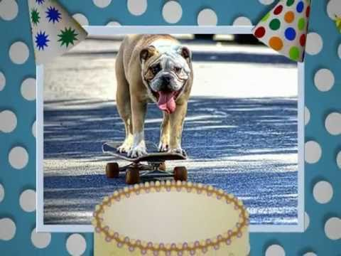 Happy Birthday Bulldog Style Free Pets Ecards Greeting