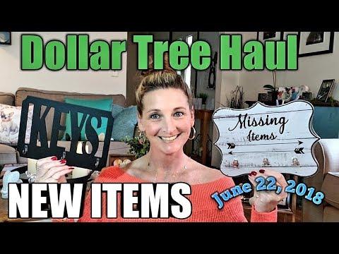 Dollar Tree Haul 💕 NEW ITEMS💕 Bonus footage 😊 June 22,2018
