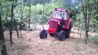 IMT 558 izvlacenje drva uzbrdo,drvarka oko 5 m
