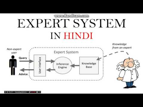 Expert system in