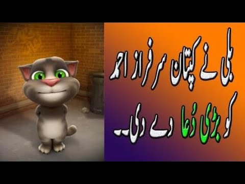 Talking Tom Funny Videos In Hindi Free Download